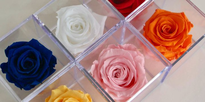 Buy Preserved Flowers – 4 Tips To Preserve Flowers In The Best Possible Fashion